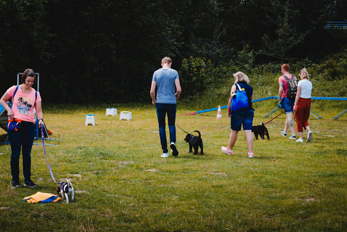 hundpunkt_hundeschule_muenster-trainingswiese-hiltrup-1