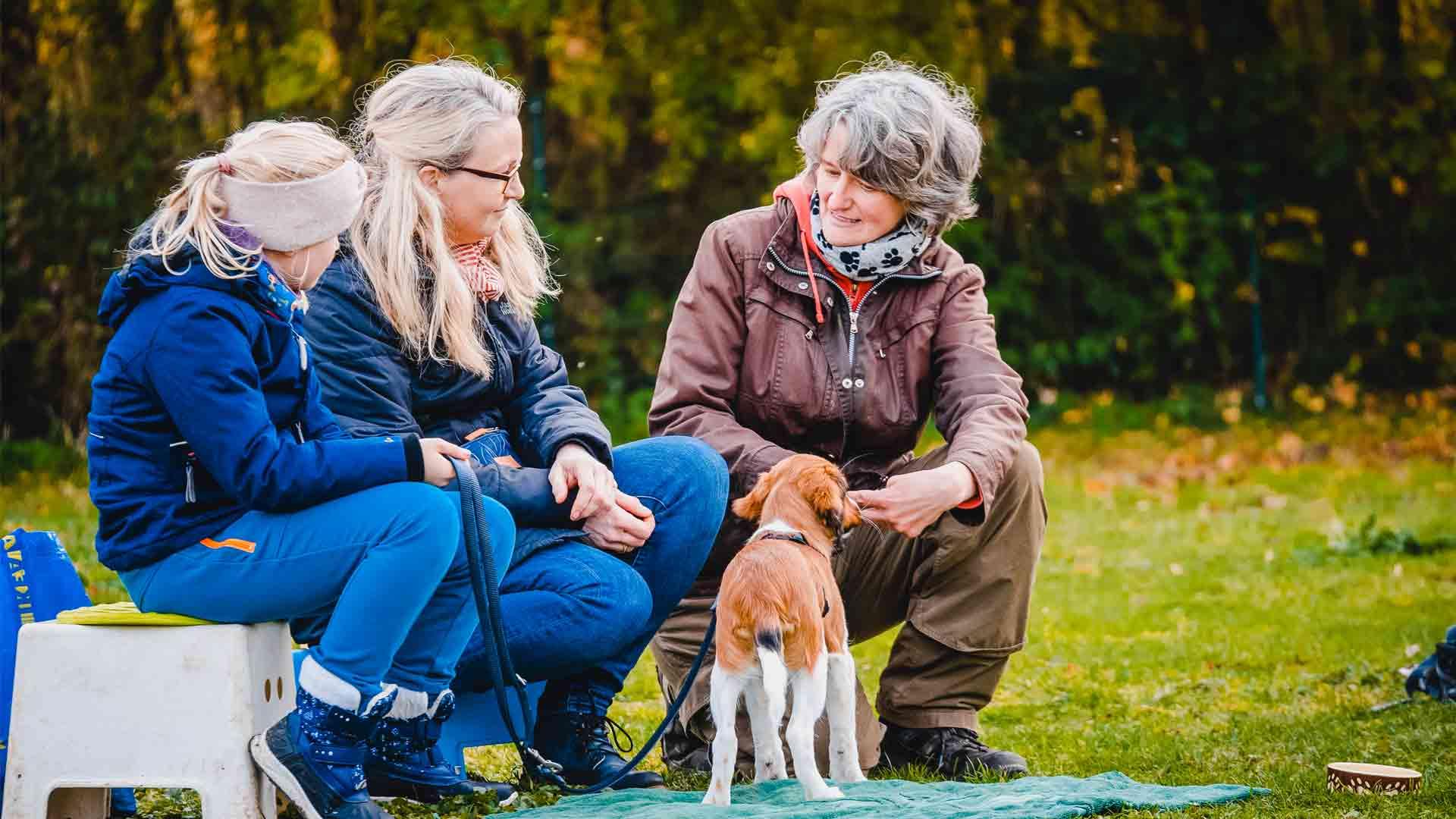 hundpunkt_hundeschule_muenster-ibbenbueren-beratung-banner