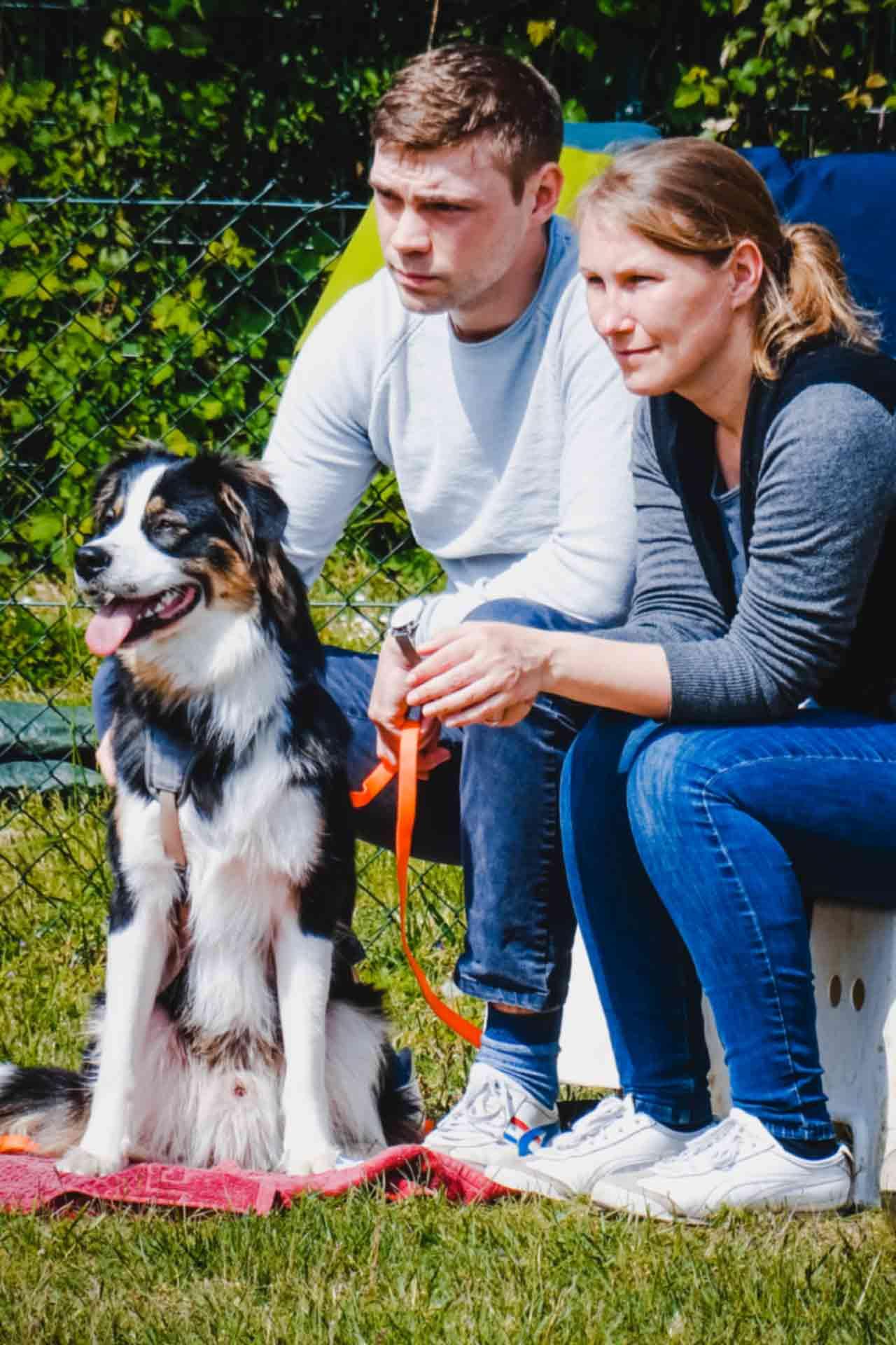 hundpunkt_hundeschule_muenster-ibbenbueren-hundetraining-teams