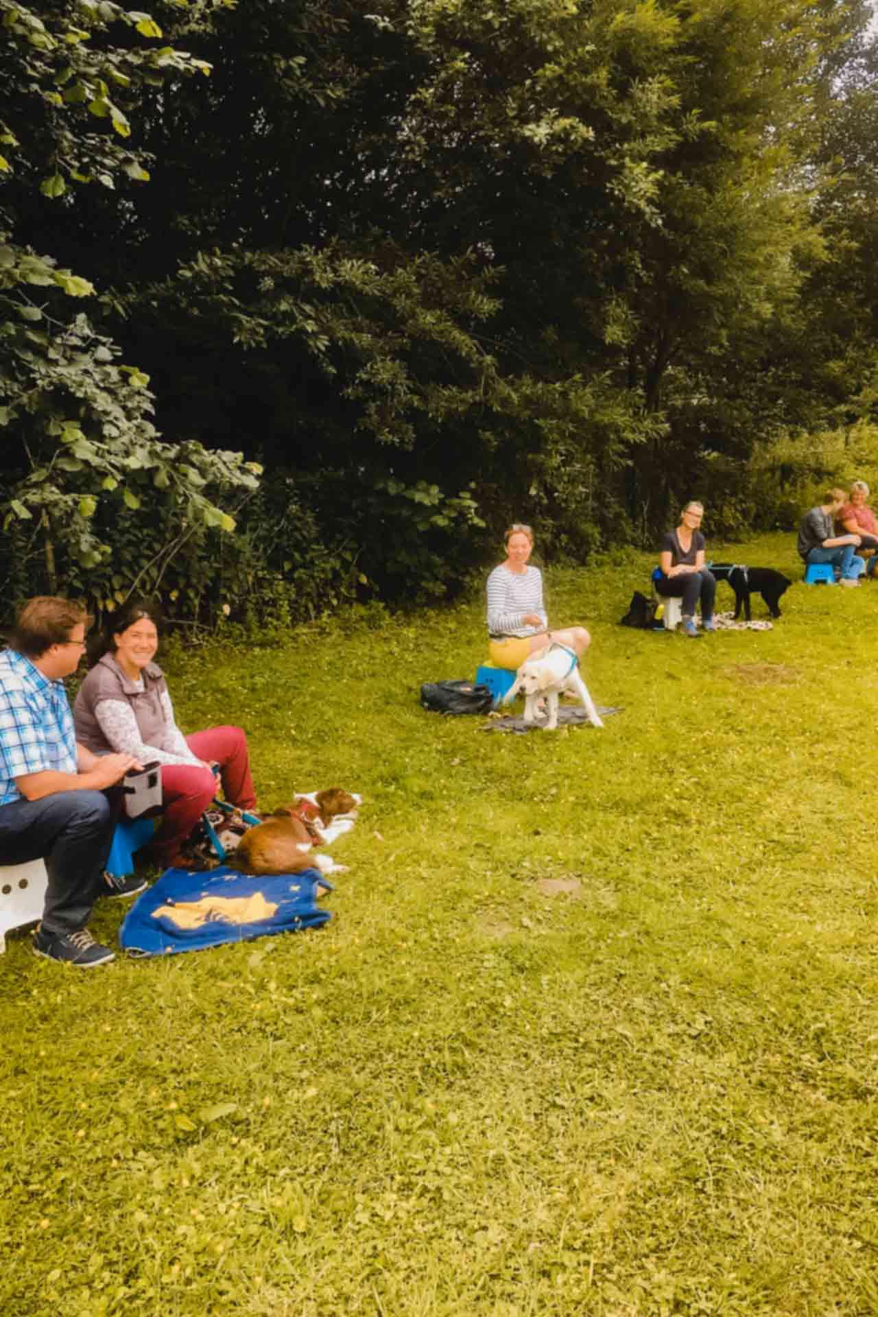 hundpunkt_hundeschule_muenster-ibbenbueren-kurse-gruppentraining-15