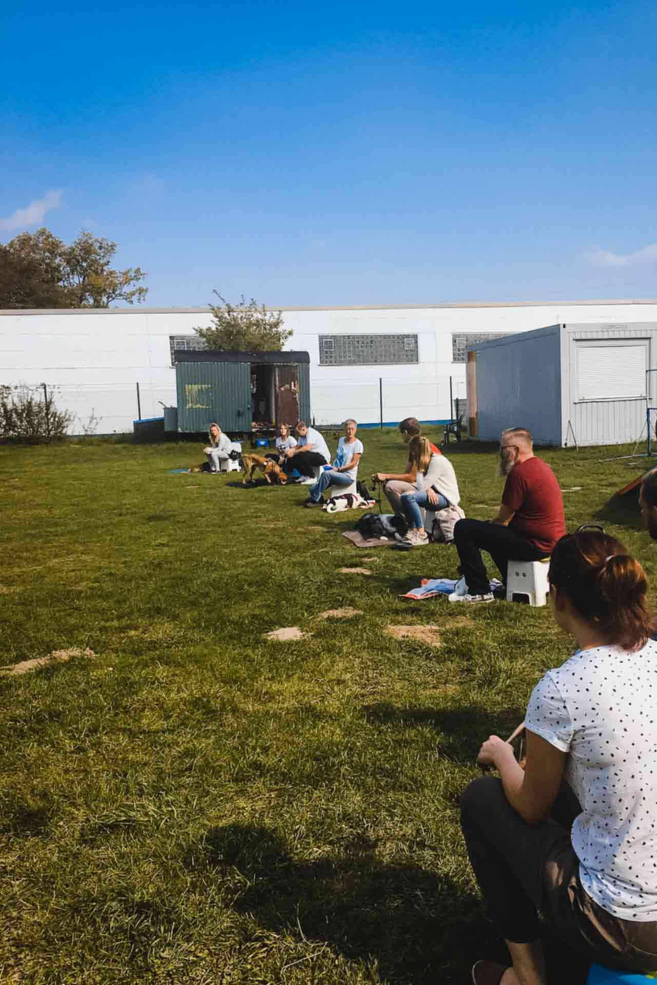 hundpunkt_hundeschule_muenster-ibbenbueren-kurse-gruppentraining-5