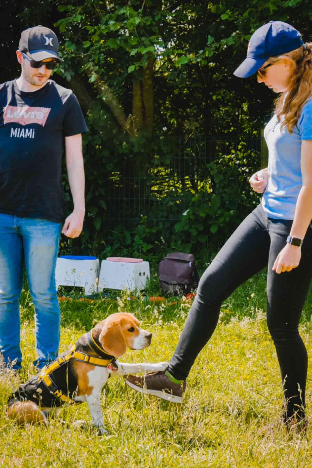 hundpunkt_hundeschule_muenster-ibbenbueren-pfote-2