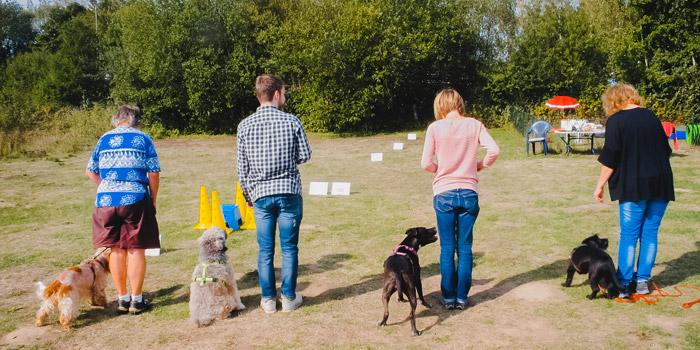 hundpunkt_hundeschule_muenster-ibbenbueren-trainingswiese-hiltrup-12