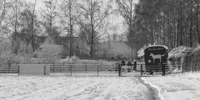 hundpunkt_hundeschule_muenster-ibbenbueren-trainingswiese-hiltrup-14